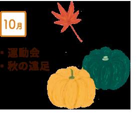 10月 運動会、秋の遠足