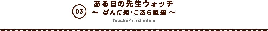 ある日の先生ウォッチ 〜 ぱんだ組・こあら組編 〜